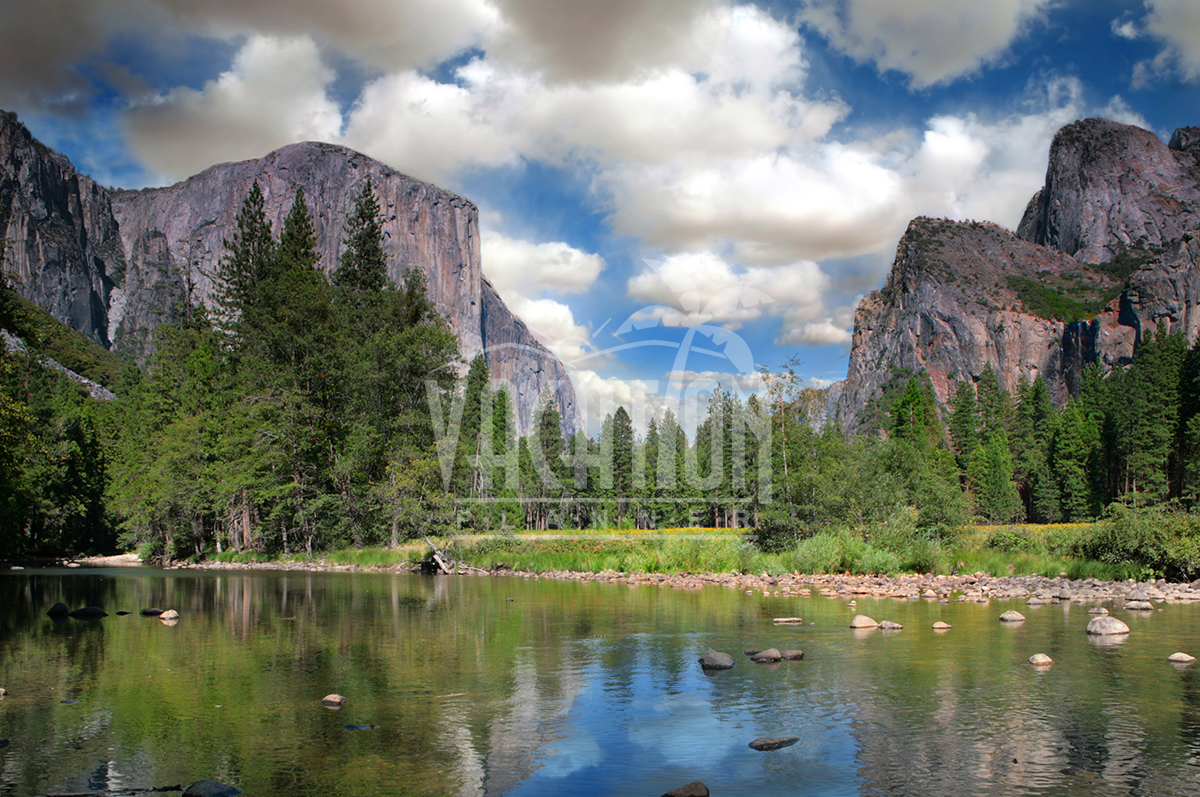 yosemite-park-coach-tour-from-san-francisco-1